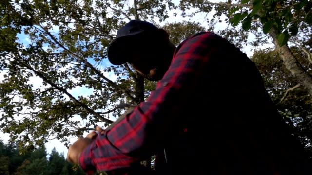 lumberjack chopping wood log - lumberjack stock videos & royalty-free footage