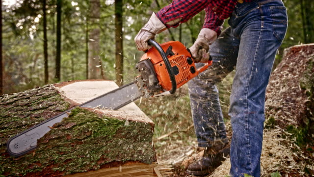 SLO MO Lumberjack cutting a fallen tree with chainsaw