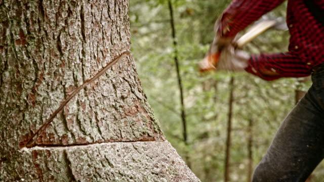 slo mo lumberjack hitting wood piece in horizontal cut - forestry industry stock videos & royalty-free footage