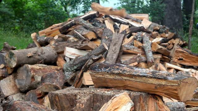 木こり - 硬木の木点の映像素材/bロール