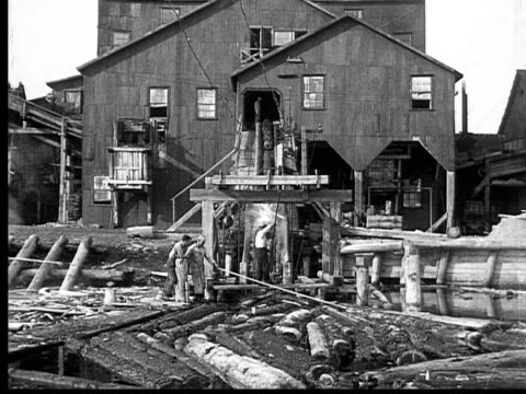1927 B/W MONTAGE MS Lumberjacks pushing logs onto ramp into lumberyard, Ontario, Canada