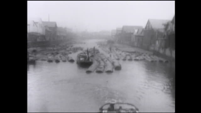 lumbermen work near log rafts in a fukagawa lumberyard - 農林水産関係の職業点の映像素材/bロール