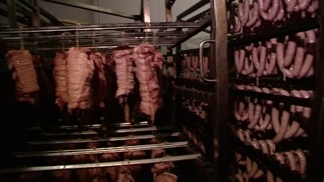 vidéos et rushes de lunch meat, sausages, hams - meat processing plant - sandwich