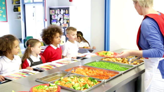 lunch time children - canteen stock videos & royalty-free footage