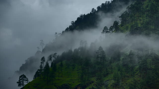 Lush and misty mountain landscape in the Parvati Hills, India