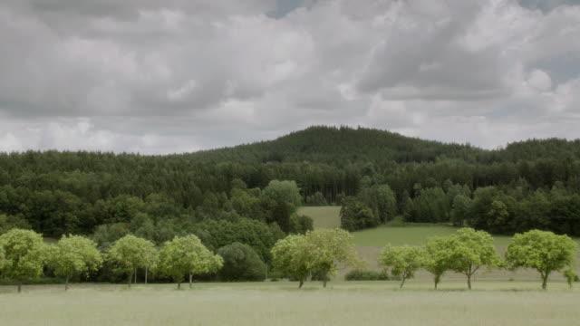 vídeos y material grabado en eventos de stock de ws a lush and wooded hillside in the country - formato buzón