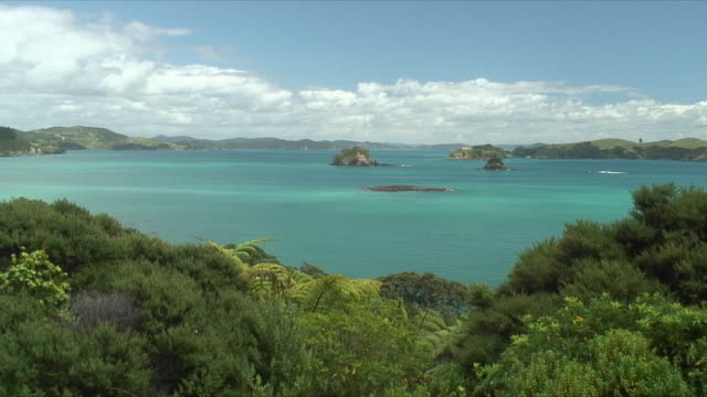 vidéos et rushes de ws ha lush coast with sea in background, bay of islands, new zealand - bay of islands nouvelle zélande