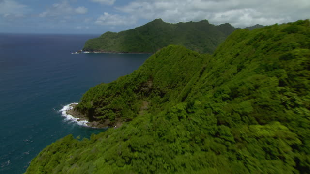 Lush coastal cliffs between Good Hope and Petite Soufriere on the island of Dominica.