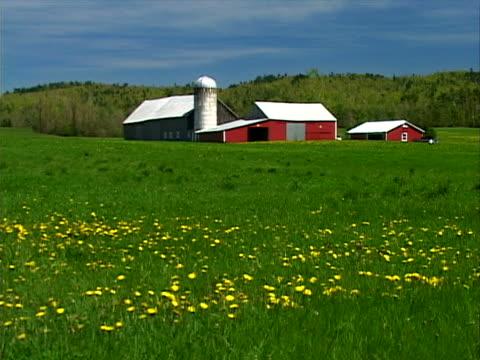 vidéos et rushes de lush field and barns - silo