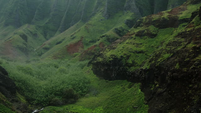 lush foliage fills a deep canyon near the na pali coast in hawaii. - na pali coast state park stock videos & royalty-free footage