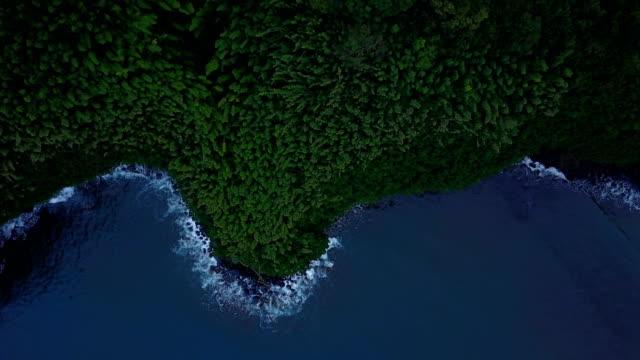Forêt de Lush ci-dessous Drone vole au-dessus de l'île de Maui