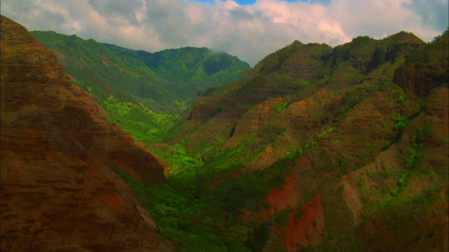 lush green foliage fills a canyon. available in hd. - black canyon stock videos & royalty-free footage