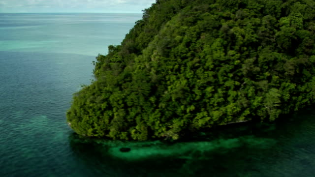 a lush green island sits in a clear turquoise sea. available in hd. - palau stock videos & royalty-free footage