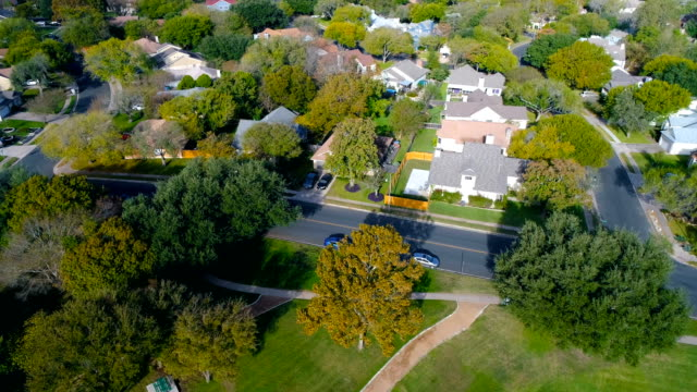 Lush green Luxurious Mansion Home in Suburb Neighborhood with green Landscape and big Trees Aerial Drone view of Suburb