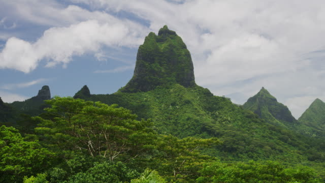 lush green mountain landscape in tahiti / moorea, french polynesia - moorea stock videos and b-roll footage