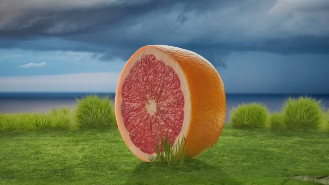 vídeos y material grabado en eventos de stock de exuberante naturaleza lluvia verde con naranja gigante - comidas y bebidas