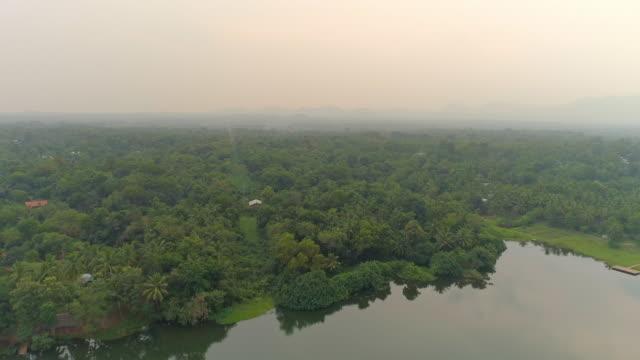 ws lush green treetop landscape,sri lanka - sri lanka stock videos & royalty-free footage