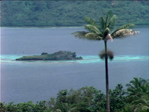 lush jungle surrounds truk lagoon. - micronesia stock videos & royalty-free footage