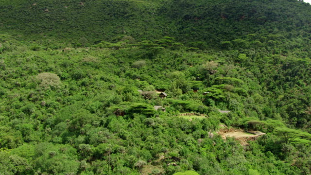 WS ZI AERIAL Lush mountain and approaching house on the mountainside / Kenya