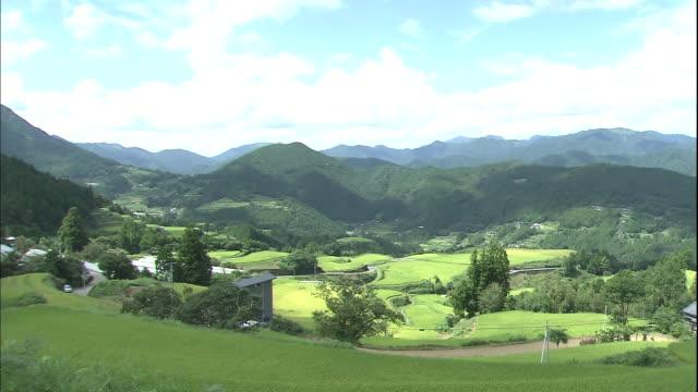 Lush mountains surround rice paddies in Kochi, Japan.