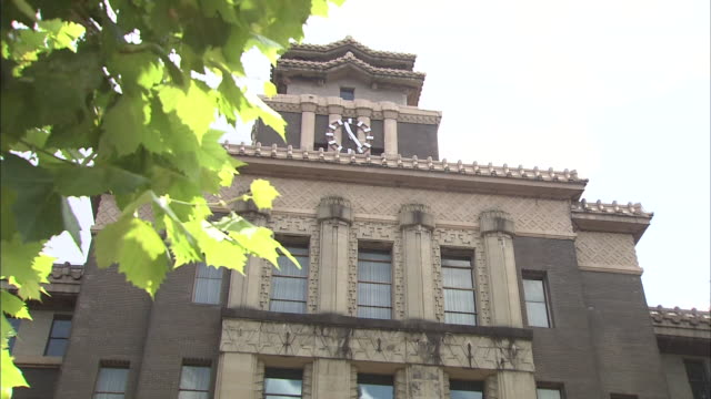 lush tree leaves frame a view of the nagoya city hall. - town hall government building stock videos & royalty-free footage