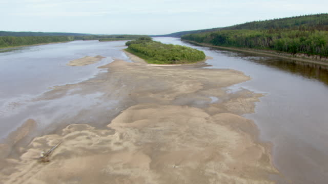 Lush trees line the riverbanks of the Athabasca River.