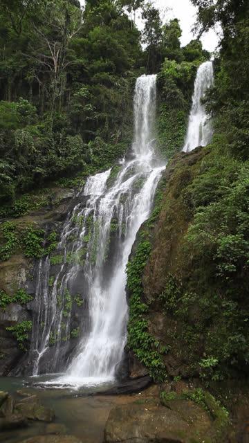 HD lush tropical waterfall - vertical