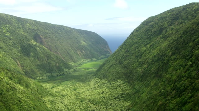 WS AERIAL Lush valley with sea in background / Hawaii, United States