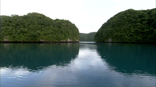 Lush vegetation covers the islands of Palau. Available in HD.