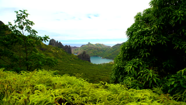 Lush vegetation ocean bay volcanic mountains Nuku Hiva