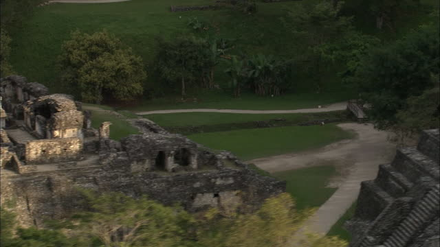 lush vegetation surrounds mayan ruins in chiapas, mexico. - palenque stock-videos und b-roll-filmmaterial