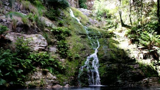 Lush waterfall
