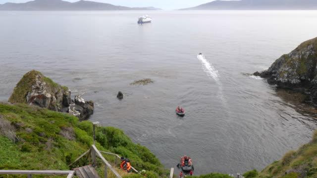 vídeos de stock, filmes e b-roll de luxury cruise ship arriving to cape horn - passear sem destino