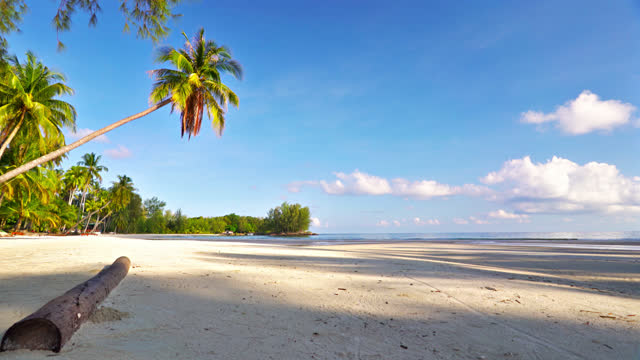 stockvideo's en b-roll-footage met luxe leeg tropisch strand - zeegezicht