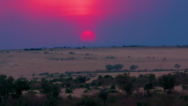 Maasai Mara 2nd Sept 16