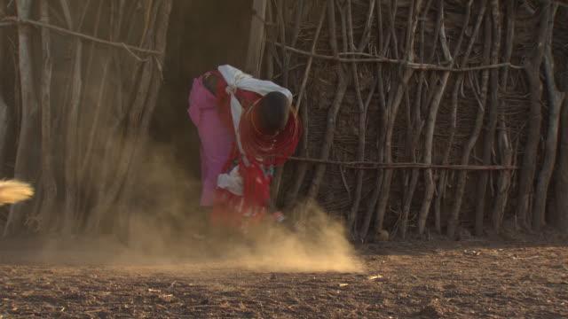 Maasai or Samburu Woman sweeping at front of hut, goats in foreground, WITH AUDIO