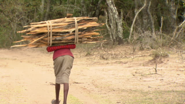 maasai or samburu women and girls carrying bundles of wood, with audio - stereotypically working class stock videos and b-roll footage
