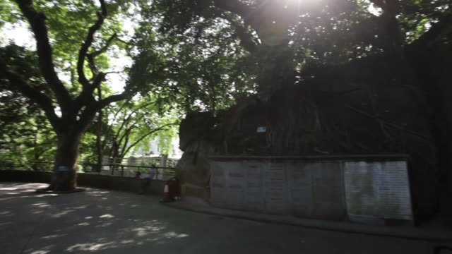 macau , china; september 24, 2016; within a 5 minute walk from the ruins of st. paul's and right beside the protestant cemetery , camões garden,... - ruins of st. paul's macao stock videos & royalty-free footage