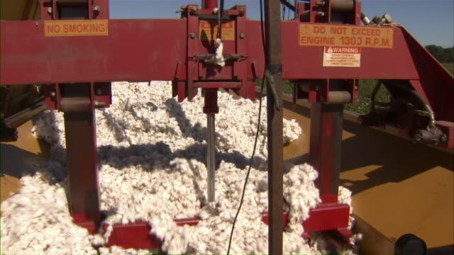 vídeos y material grabado en eventos de stock de cu of machine compacting harvested cotton into trailer. - cotton
