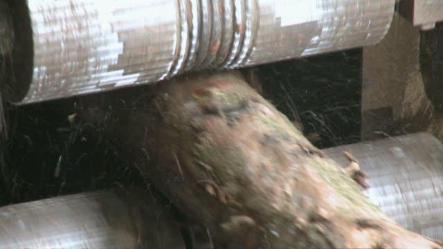 cu machine cutting up logs in sawmill / trier, rhineland-palatinate, germany - 材木置き場点の映像素材/bロール