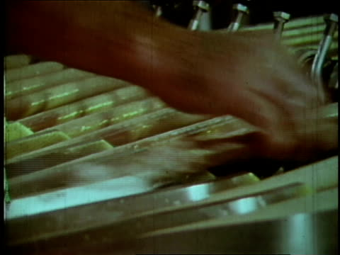 1970 MONTAGE Machine helps break rows of meat into lines of hot dogs at an Oscar Mayer facility