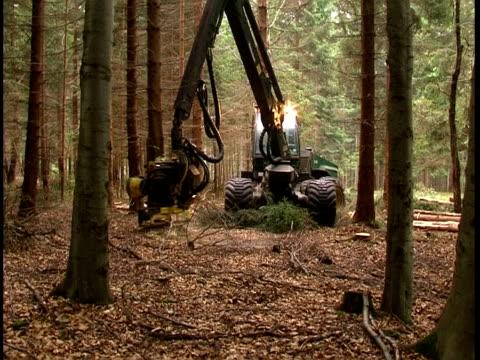 stockvideo's en b-roll-footage met machine sawing wood - machinerie