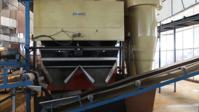 machine shaking the tea powder on an assembly line. darjeeling tea is a tea from the darjeeling district in west bengal, india. unlike most indian... - var bildbanksvideor och videomaterial från bakom kulisserna
