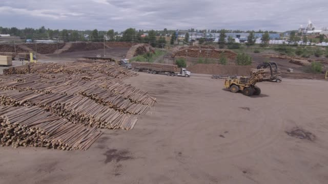 A machine unloads logs for processing at the West Fraser Timber Co sawmill in Quesnel British Columbia Canada on June 5 2015 Shots Wide shots of...