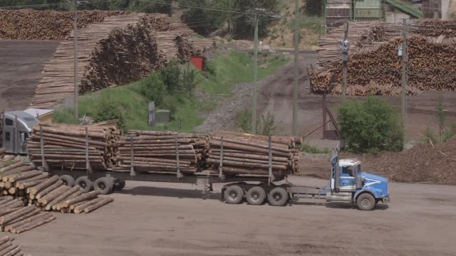 A machine unloads logs for processing at the West Fraser Timber Co sawmill in Quesnel British Columbia Canada on June 5 2015 Shots Close ups of...