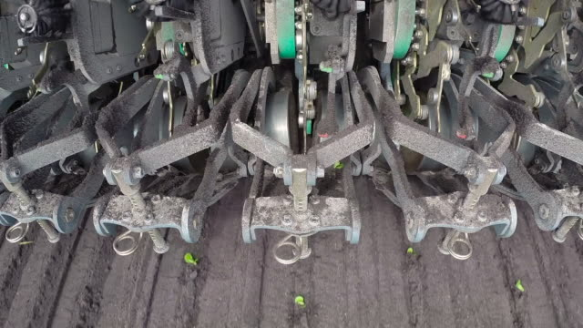 machinery plants seedling lettuce plants in field, uk - botany stock videos & royalty-free footage