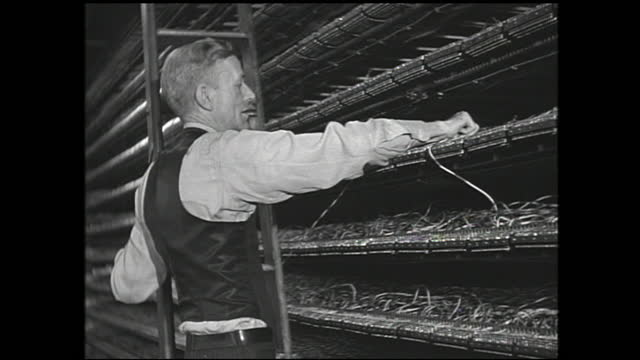 machinery spooling cable and workers operating the machinery; machine spinning many thin cables into one thick one; worker with ladder organizing... - 1940 1949 bildbanksvideor och videomaterial från bakom kulisserna