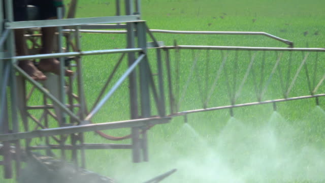 machinery spraying pesticide in rice field - insecticide stock videos & royalty-free footage