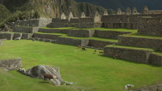 machu picchu, peru - old ruin stock videos & royalty-free footage