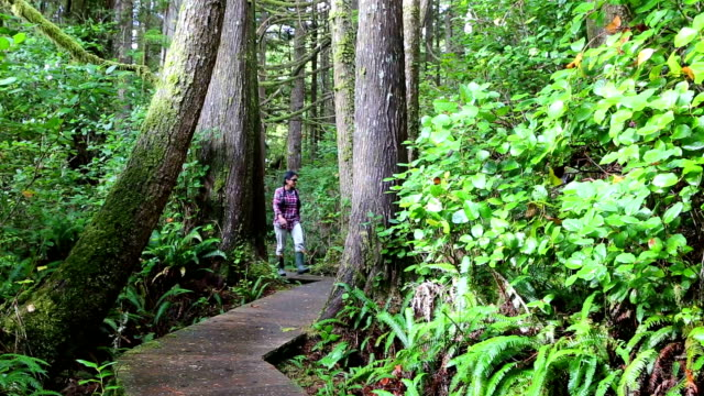 MacMillan Provincial Park Cathedral Grove Vancouver Island Wonderlust